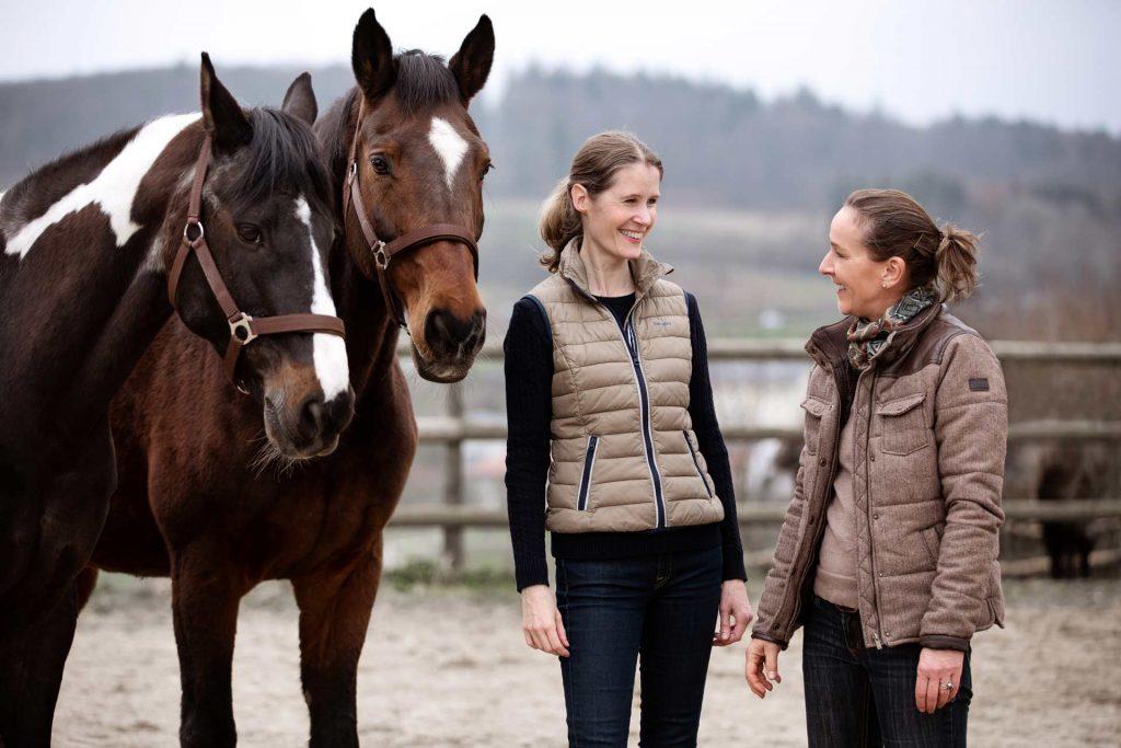 HorseEffect Team